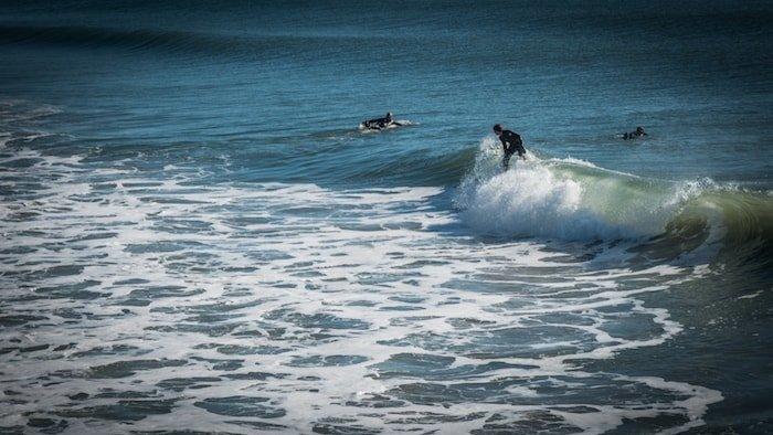 noleggio surf arona
