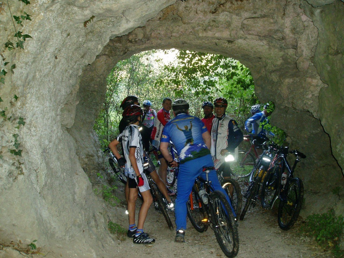 Mountain Bike - Rental only