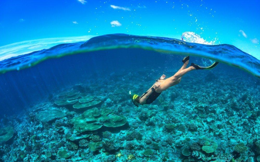 Snorkeling at Tavolara
