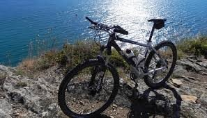Mountain Bike Front