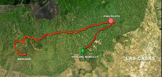 Bike Tour Hoya del Morcillo - Mercadel  - Pino Piloto