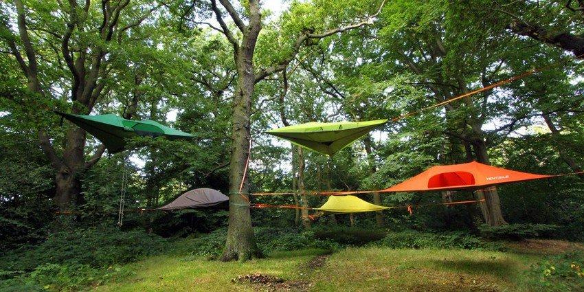 Forestalp Natura in Movimento Tour Operator